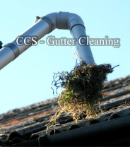 ccs gutter cleaning