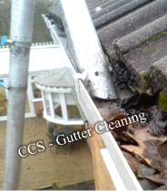 ccs gutter cleaning with vacuuming